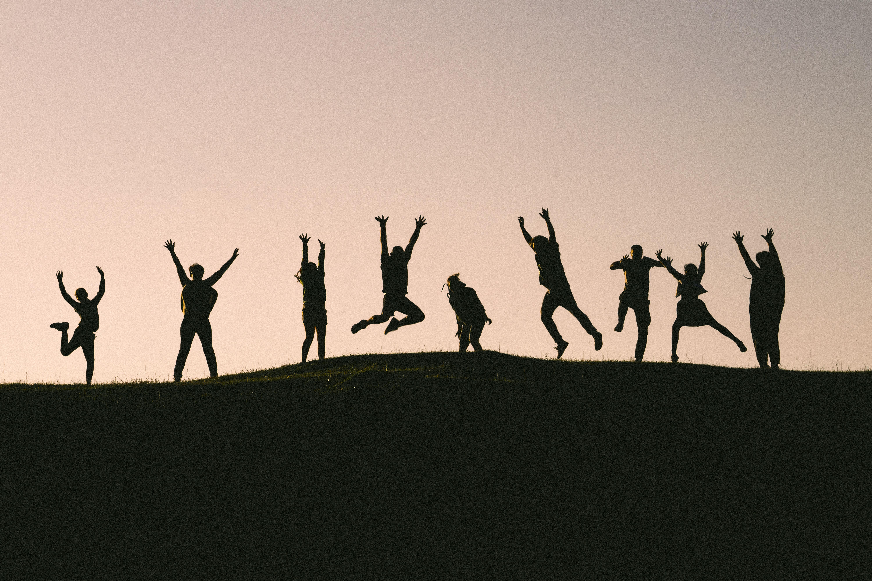 viv-opportunity-team